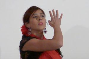 012_2017 Flamenco, el duende